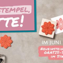 Der neue Stampin' Up! Katalog 2016-2017 ist da