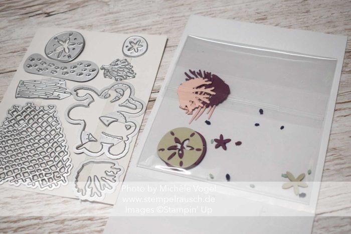 Aufbewahrungstipp Framelits Stanzteile mit den transparenten Umschlägen von Stampin' Up! www.stempelrausch.de