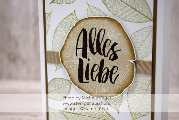 Stampin' Up! Kraft der Natur Grußkarte, Männerkarte, maskuline Karte mit Baumscheibe und Blättern; Schwämmchentechnik; www.stempelrausch.de