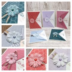 Grußkarten mit Gänseblümchenglück in den neuen In Colors